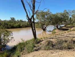 Coopers Creek.jpg